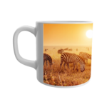Black & white zebras printed ceramic white mug for the kids 1 - Product GuruJi